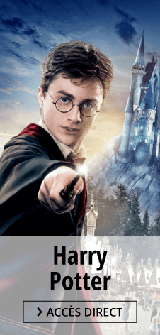Harry Potter Posters und Merchandises Shop