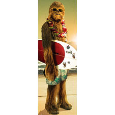 Star Wars Poster Chewbacca