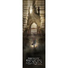 Poster de porte Fantastic Beast and Where to Find Them -