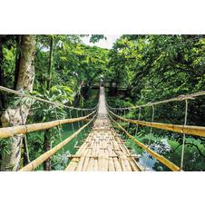 Poster Jungle Bridge