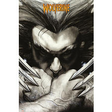 Poster Marvel Comics Wolverine