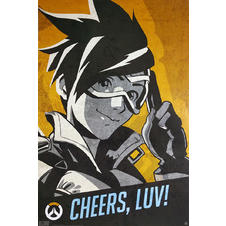 Poster Overwatch -