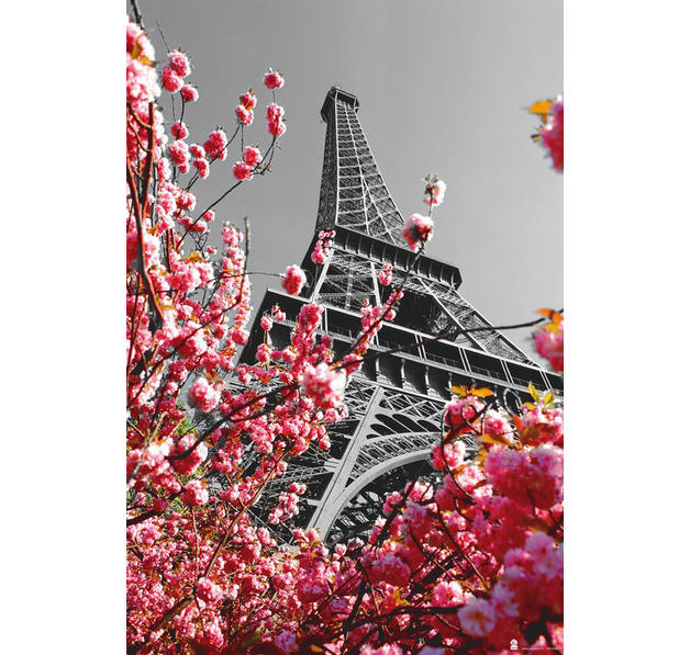 poster paris tour eiffel posters grand format commandez d s maintenant close up. Black Bedroom Furniture Sets. Home Design Ideas