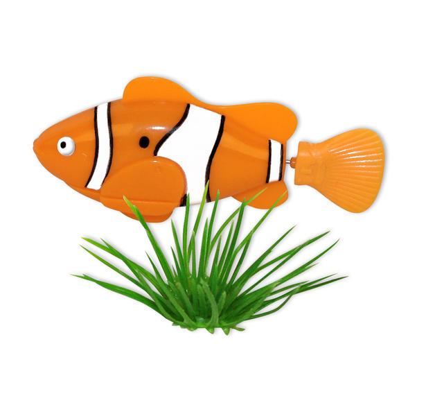 Robot poisson poisson clown en vente sur close up for Poisson clown prix