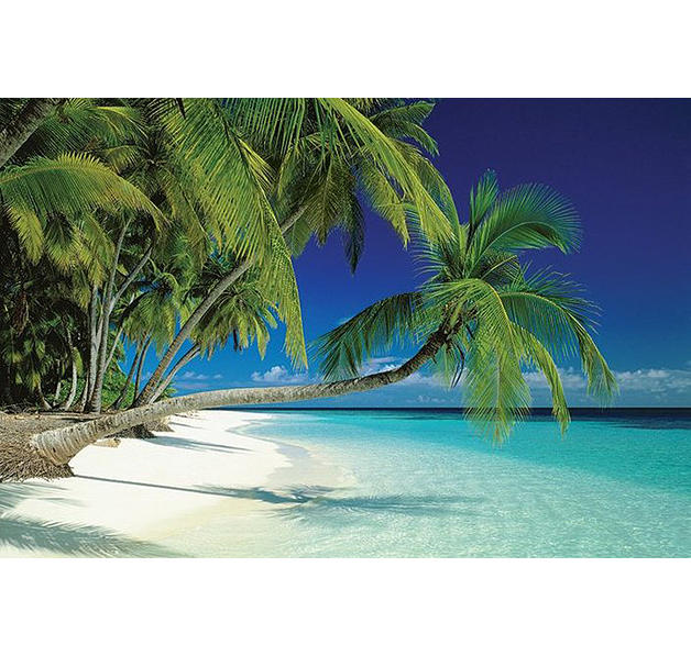 poster plage de sable fin maledives posters grand format commandez d s maintenant close up. Black Bedroom Furniture Sets. Home Design Ideas
