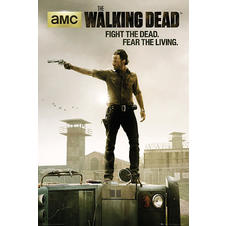 "Poster The Walking Dead ""Fight"