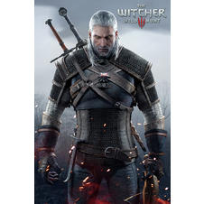 Poster The Witcher 3 -