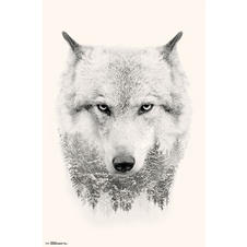 Poster Loup arbres