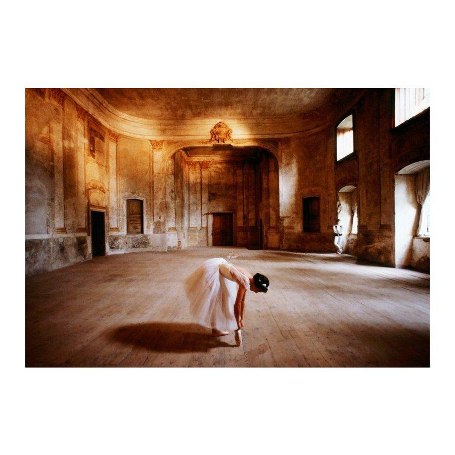 poster danseuse the rehearsal la r p tition posters grand format commandez d s maintenant. Black Bedroom Furniture Sets. Home Design Ideas