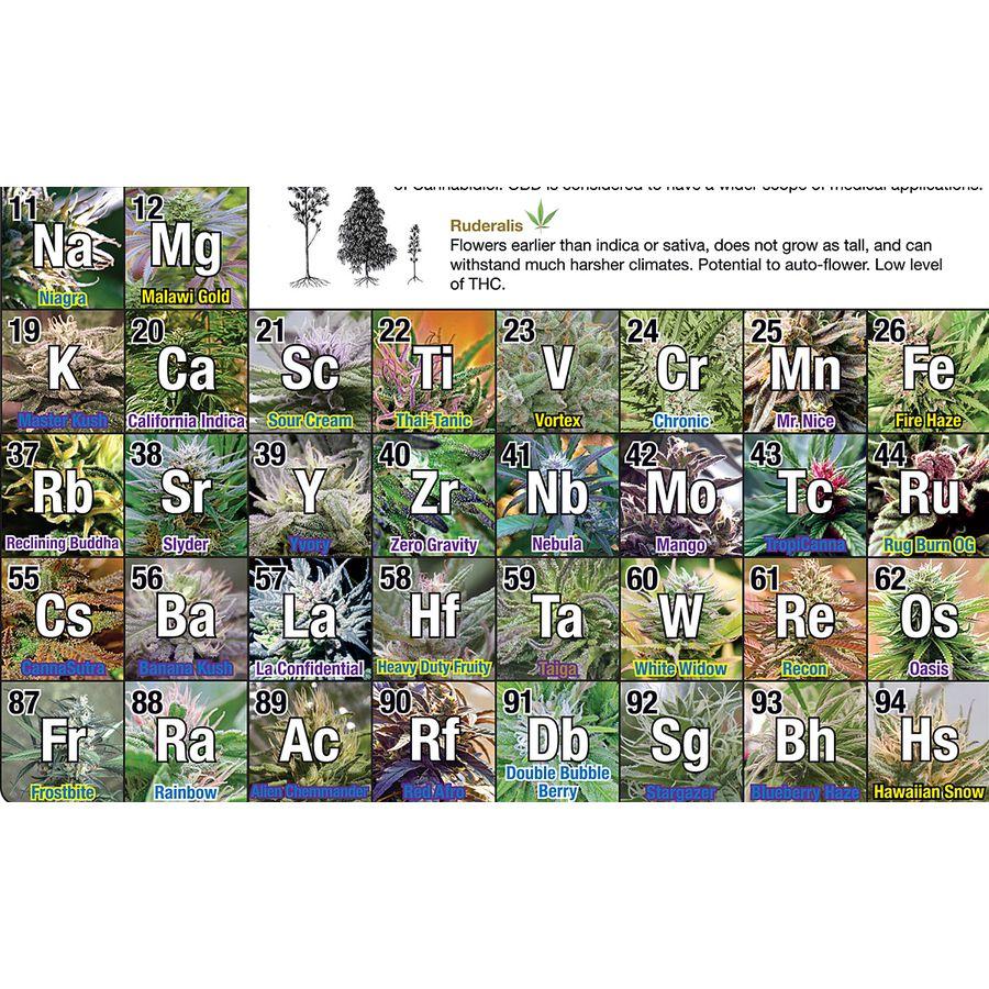 Tableau Periodique Du Cannabis En Anglais Posters Grand Format Commandez Des Maintenant Close Up