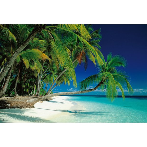 poster plage de r ve tropical paradise maldives posters grand format commandez d s. Black Bedroom Furniture Sets. Home Design Ideas
